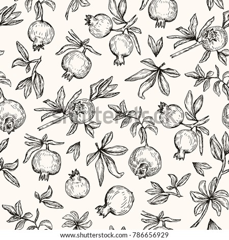 Vector illustration. Pen style vector seamless pattern. Pomegranates, branches and leaves.