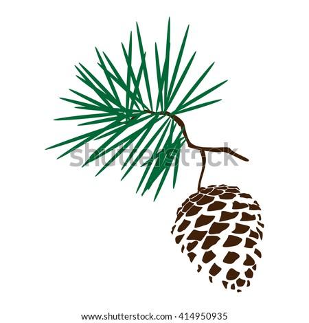 Vector illustration pine cone branch silhouette icon. Pine cone wood nature