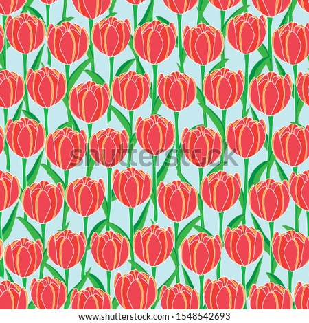 vector illustration red tulip