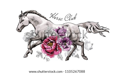 Vector illustration. Running Horse and peony, tulip flowers. Horse club - lettering quote. Poster, hand drawn style print.