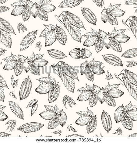 Vector illustration. Seamless pattern. Hand drawn cacao beans and cacao tree leafs. Pen style vector sketch.