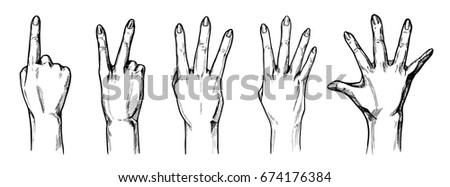 vector illustration set of a