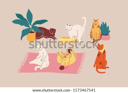 Vector illustration set of adorable cats in different poses sleeping, stretching itself, playing with ball of yarn, hiding in box or basket. Cats breeds Stock foto ©