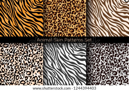 Vector illustration set of animal seamless prints. Tiger and leopard patterns collection in different colors in flat style. stock photo