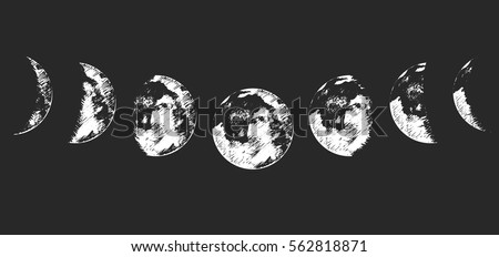 vector illustration set of moon