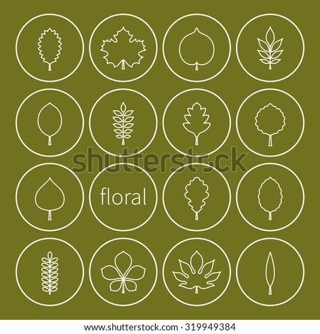 Vector illustration: set of sixteen white contours of different tree leaves icons in green circle stickers with white stroke isolated on green background