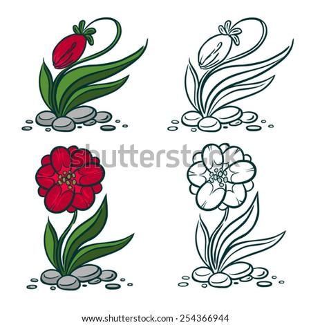 Vector illustration set. Red flower, tulip.