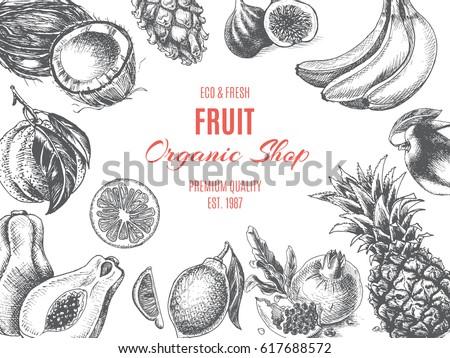 Vector illustration sketch - Fruit. Card Menu organic shop. vintage design template, banner. #617688572