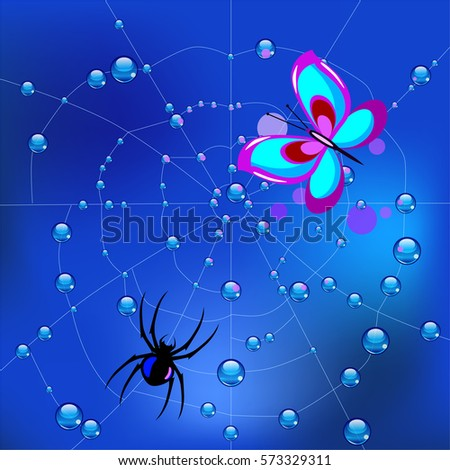 vector illustration spider on