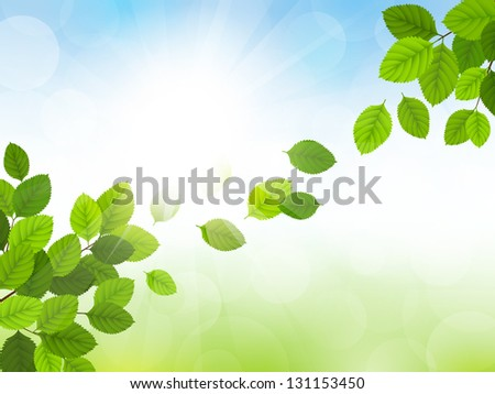 Vector illustration spring cards with green leaves