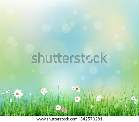 vector illustration spring