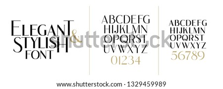 vector illustration. Stylish elegant vector composite font. set of letters english alphabet. uppercase letters, lowercase letters and numbers