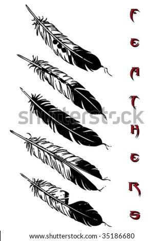 eagle feather tattoo. feather tattoo.