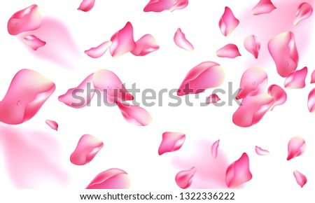 Vector illustration. Template vector the rose petals. Typography vector design for greeting cards and poster with flying rose petals.