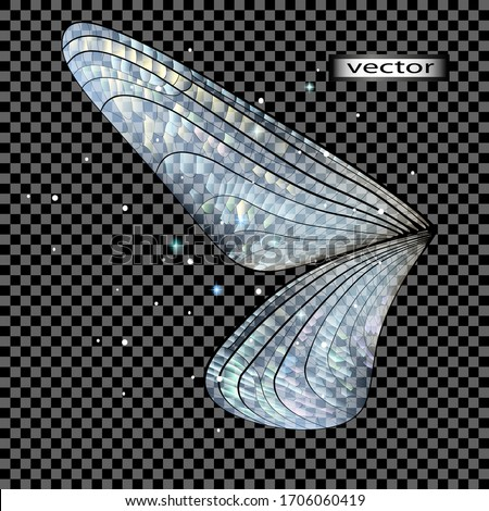 vector illustration the wing of