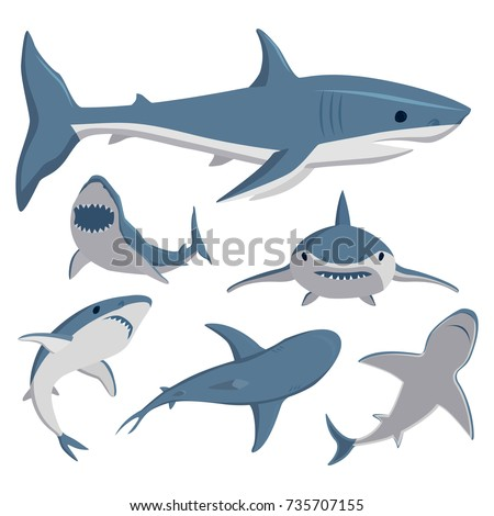 Vector illustration toothy swimming angry shark animal sea fish character underwater cute marine wildlife mascot.
