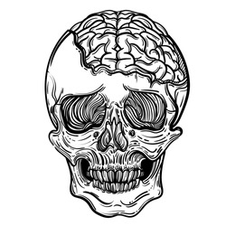 Vector illustration with a human skull and brains. Gothic brutal skull. For print t-shirts or book coloring.