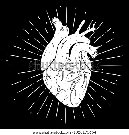 Vector illustration with human heart . Used for poster, banner, t-shirt print, bag print, badges and logo design