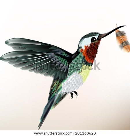 Vector illustration with realistic humming bird for design