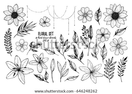 Vector illustrations - Floral set (flowers, leaves and branches). 30 hand drawn design elements in sketch style.  Perfect for invitations, greeting cards, tattoo, prints etc #646248262