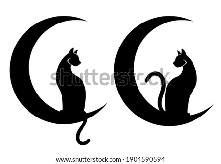 vector illustrations  two cats
