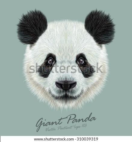 Vector Illustrative portrait of Panda.Cute attractive face bears.
