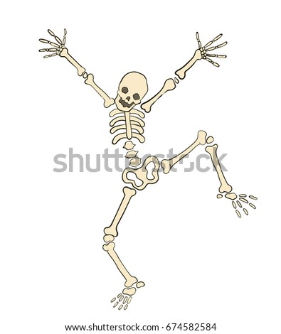 vector image cheerful skeleton
