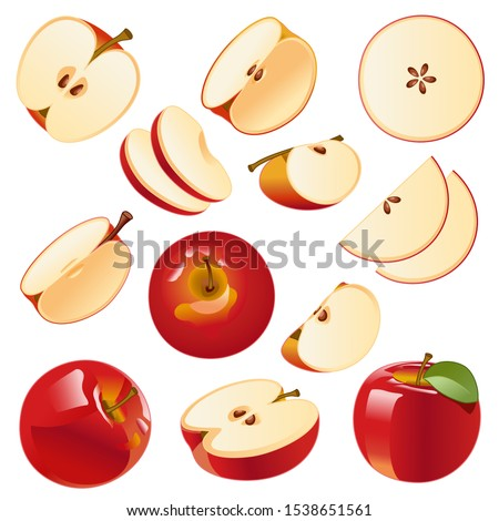 Vector image Isolated drawing apples on a white background, red apples, apple slices, apple slices, sliced apples.