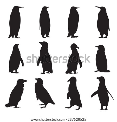 vector image of a collection of