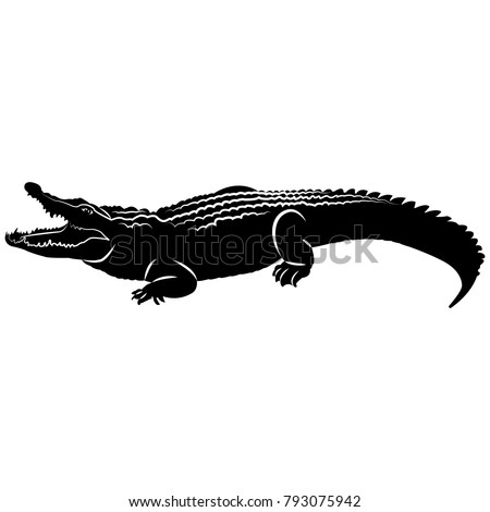 stock-vector-vector-image-of-a-crocodile-silhouette-with-an-open-mouth-on-a-white-background