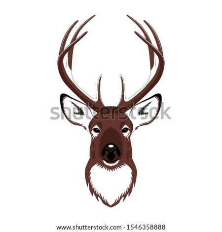 Vector image of a deer. Image on a white background.