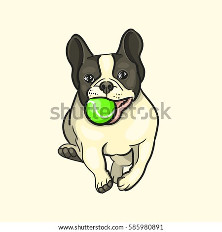 vector image of a dog playing