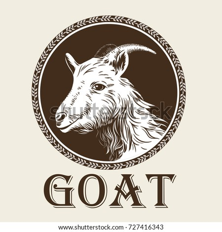 Vector image of a goat's head in the style of engraving. Agricultural vintage emblem. Logo illustration