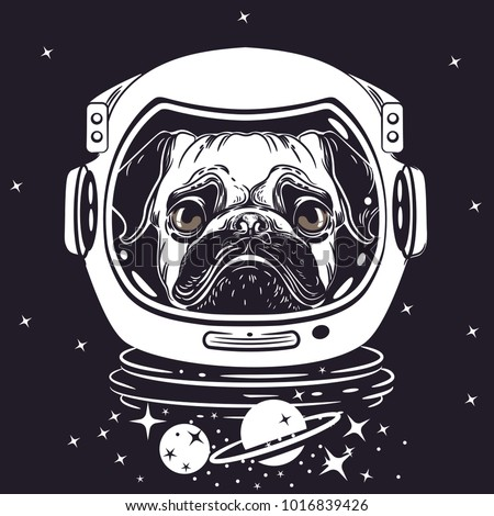 vector image of a pug in an