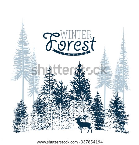 vector image of a winter wood