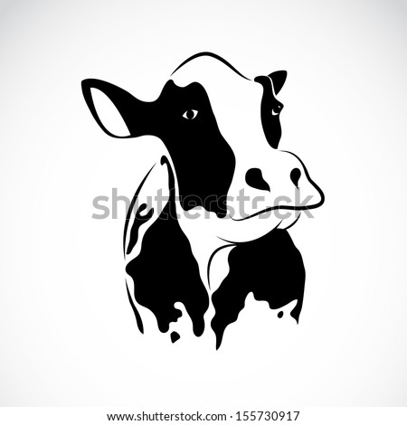 vector image of an cow on white