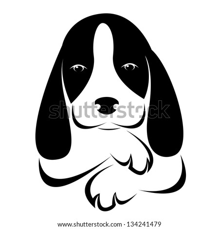 vector image of an dog on white