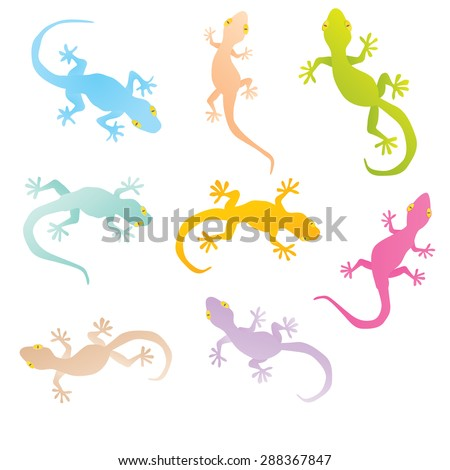 vector image of an gecko on