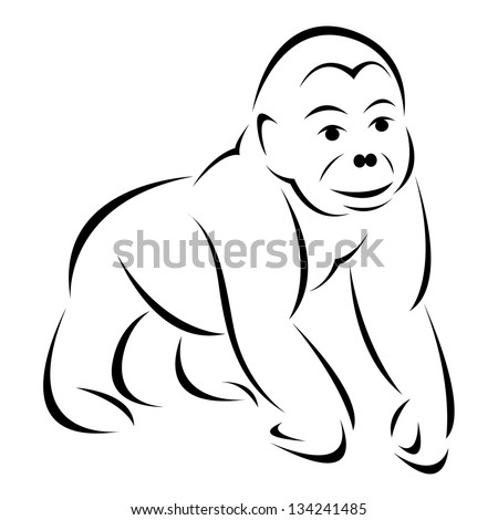 Vector image of an gorilla  on white background