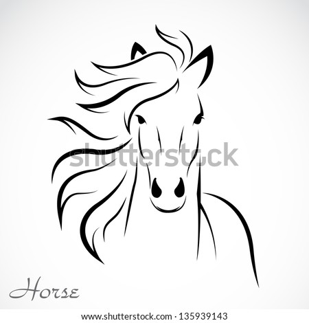 vector image of an horse on