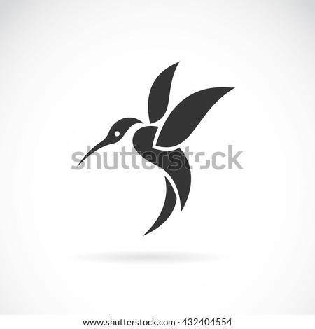 Vector image of an hummingbird design on white background, Wild Animals, Vector illustration. Logo