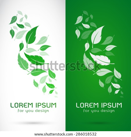 vector image of an leaves