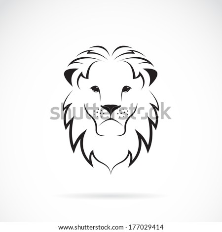 vector image of an lion head on
