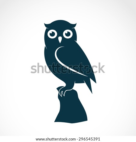 vector image of an owl on white