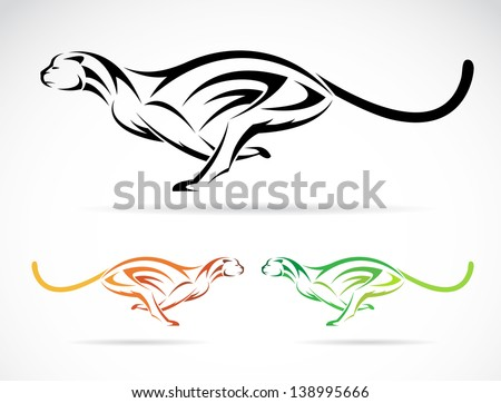 Vector image of an tiger (cheetah) on white background