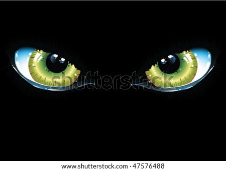 vector image of black cat eyes