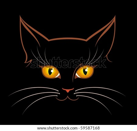 vector image of  cat eyes in darkness