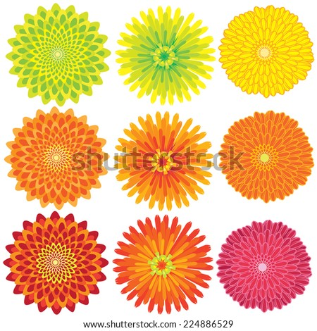 vector image of colorful