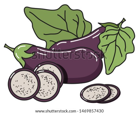 Vector image of eggplant with leaves and slices. For menu design, social networks, leaflets, websites, banners, postcards, packaging, presentation.