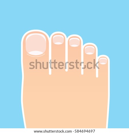 vector image of feet with